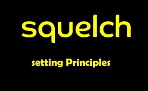 Principles of setting the squelch level doloremque