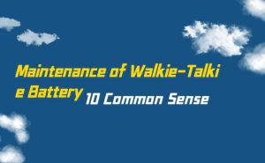 10 Common Sense of Maintenance of Walkie-Talkie Battery doloremque