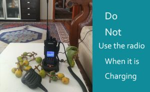 Can You Use the Radio When it is Charging? doloremque